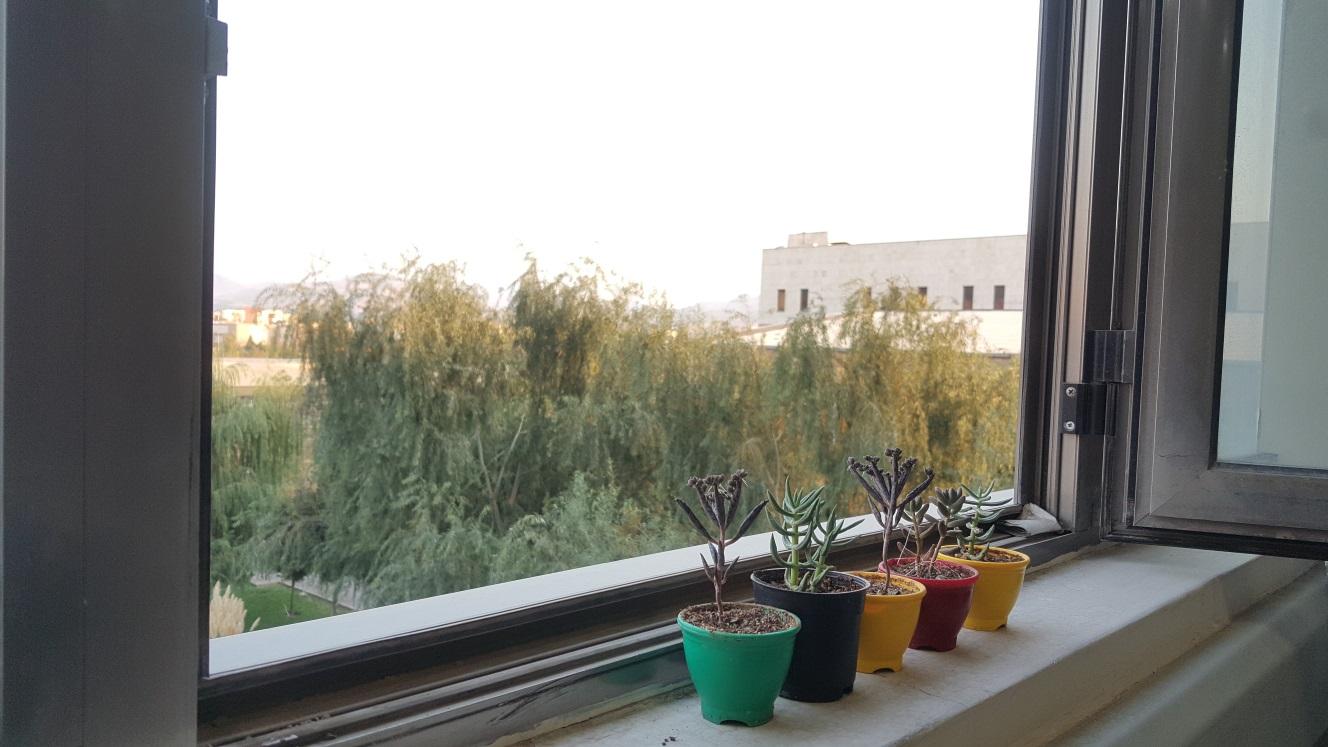 Reverse lab flower pot